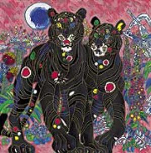Cat Suite   Tiger