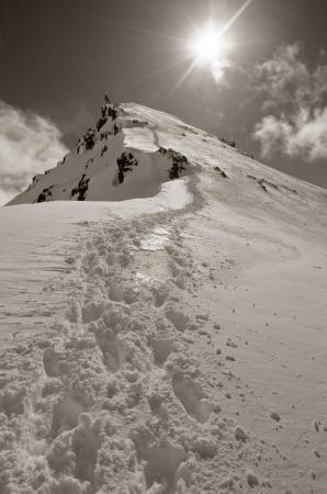 Jokull Bregmann near false summit of Hollarnhjukur, Iceland